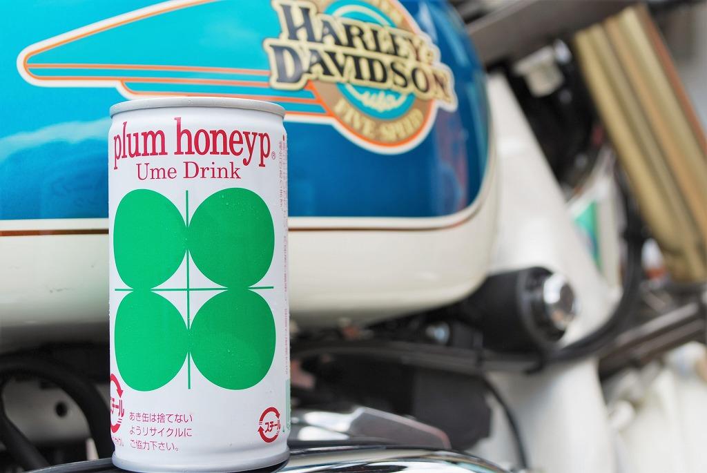 plum-honeyyp-ume-drink