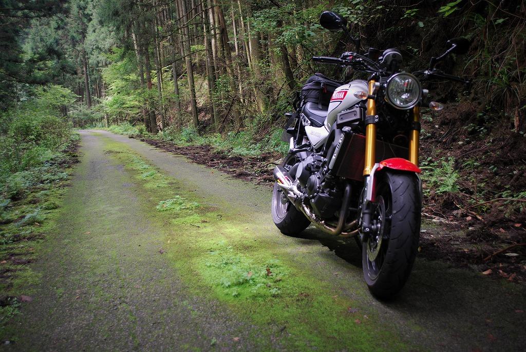 XSR900K&Hハイシート付けてツーリング栃木舗装林道