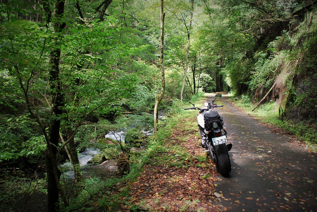 XSR900K&Hハイシート付けてツーリング栃木舗装林道川沿い